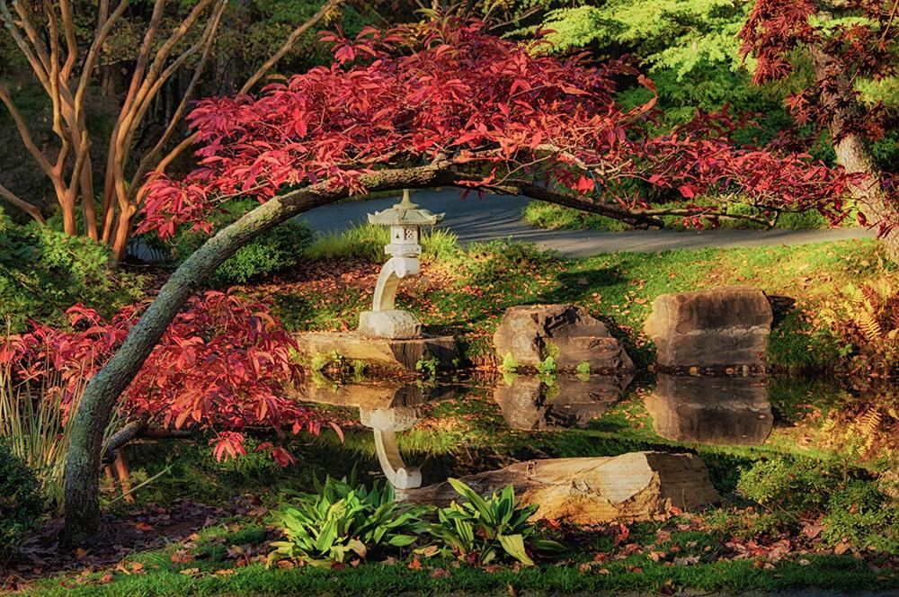 A Magical Experience Awaits at Gibbs Gardens' Japanese Garden